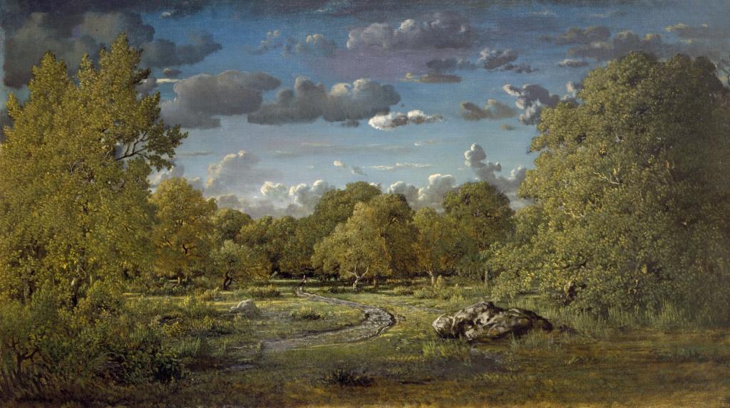 clairière dans la forêt de Fontainebleau Barbizon